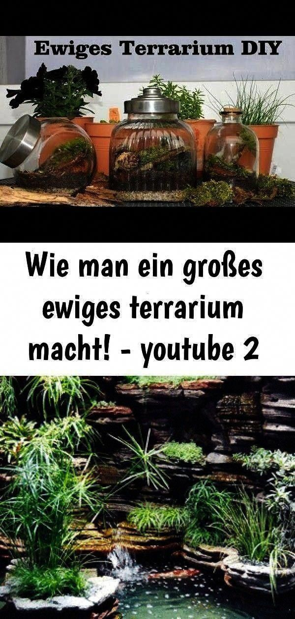 a big eternal terrarium  youtube 2  How to make a big eternal terrarium  youtube 2  How to make a big eternal terrarium  youtube 2  How To Make A Terrarium Everything In...