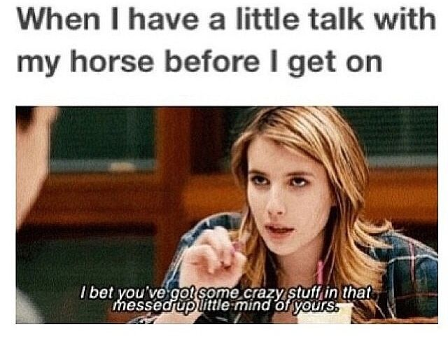 Pin by Rodeo on Ponies | Funny horses, Horse jokes, Funny horse memes