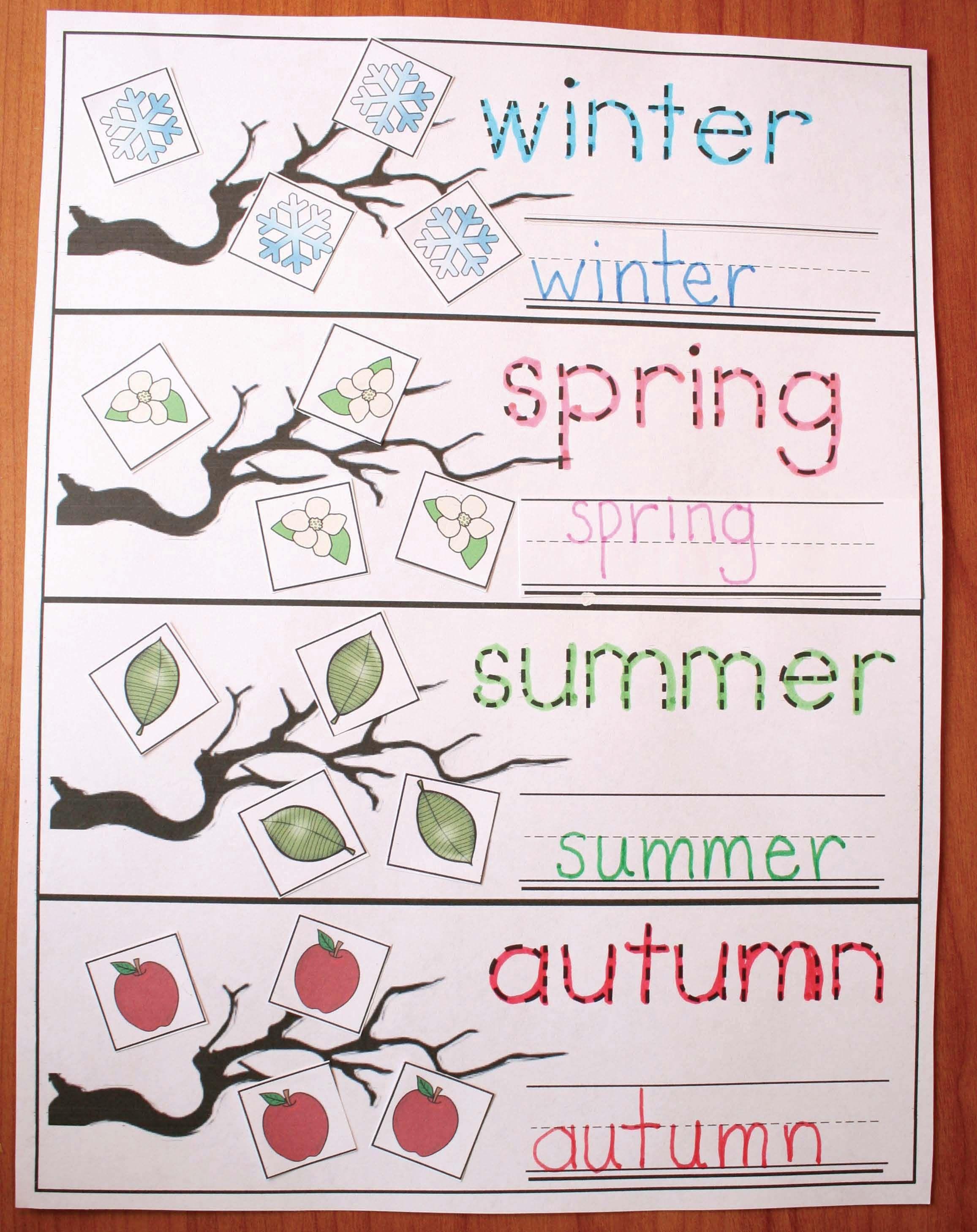 The 4 Seasons Of My Apple Tree In