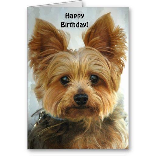 Yorkie Happy Birthday Card Zazzle Com Yorkie Happy Birthday Greeting Card Dog Greeting Cards