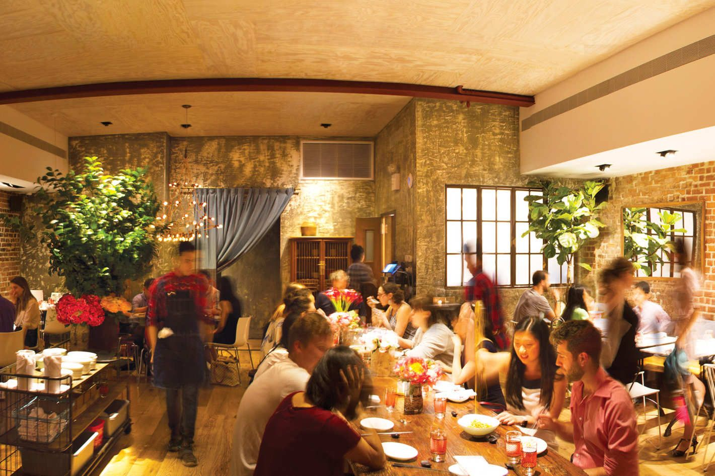 New York Restaurant Review Hao Noodle and Tea by Madam