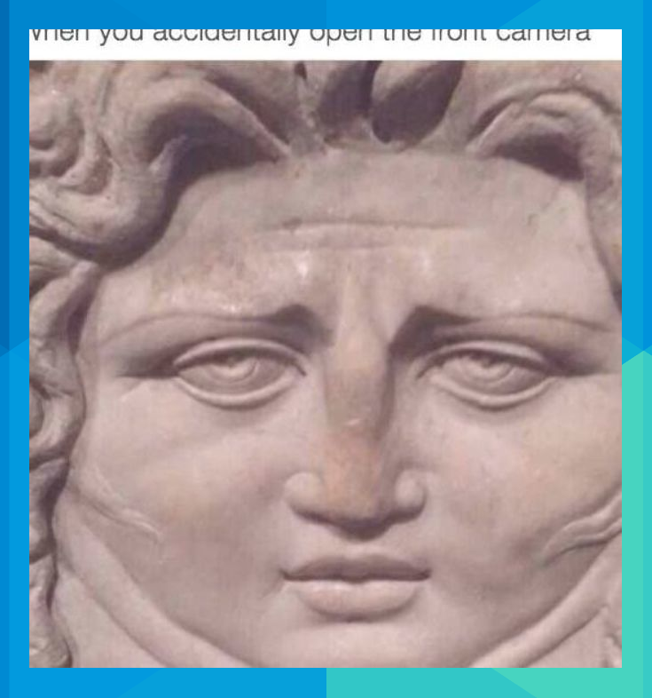 You Don T Just See A Double Chin When You Accidentally Open Your Front Facing Camera You See One All The Time Tenamul Funny Art Funny Artist Memes Art Memes