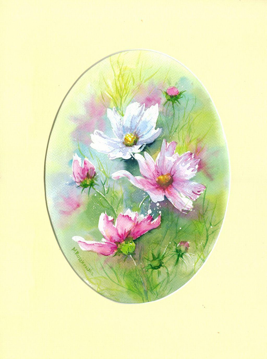 Kosmosy Maria Roszkowska Watercolor Cosmos Flowers Art Watercolor
