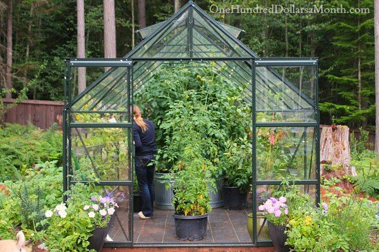 17 Best 1000 images about My Greenhouse on Pinterest Gardens