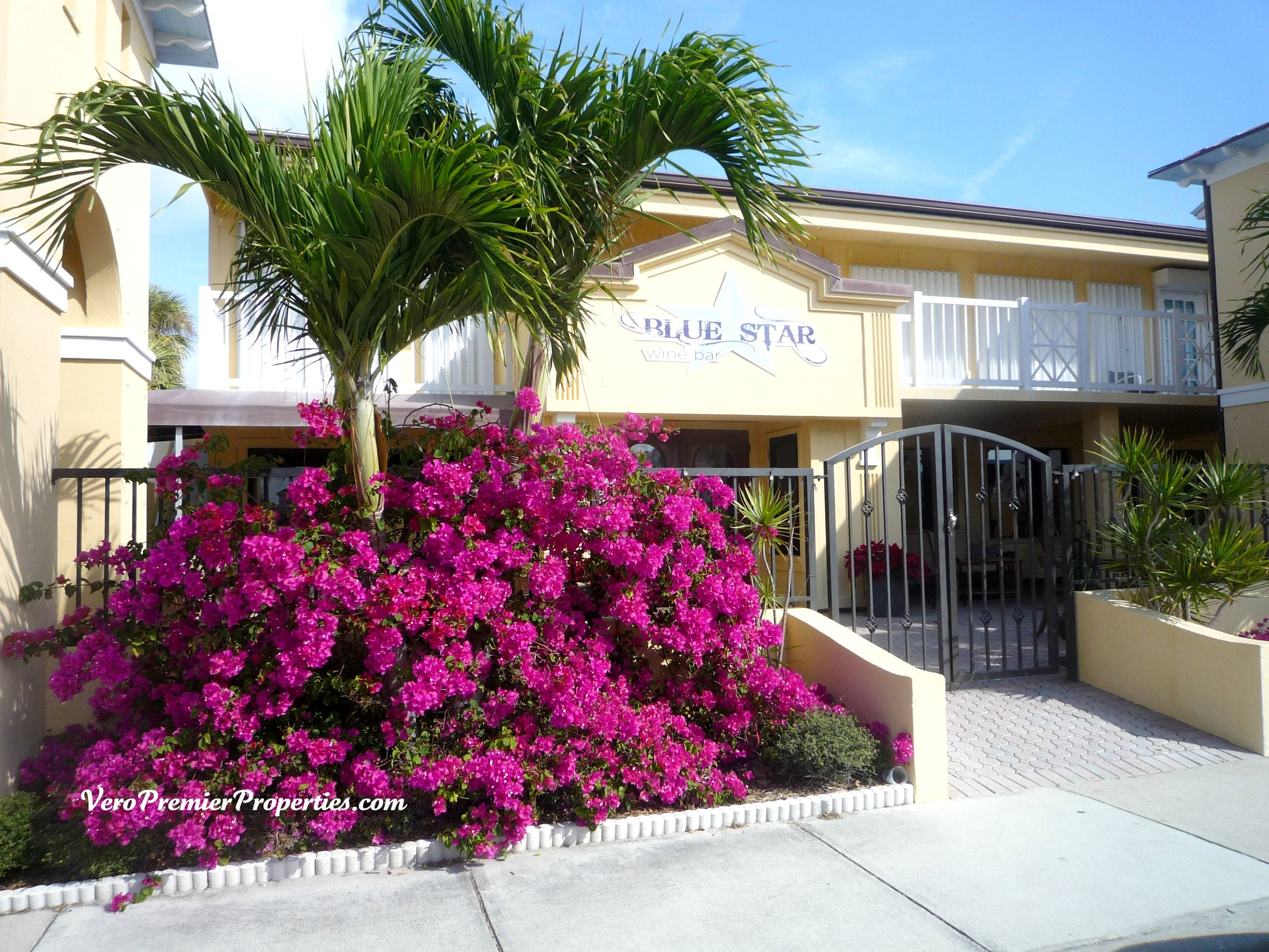 Blue Star Wine Bar Fabulous Vero Beach Pinterest