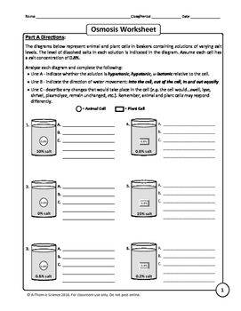 Osmosis and Tonicity Worksheet | mnkm | Worksheets, Biology ...