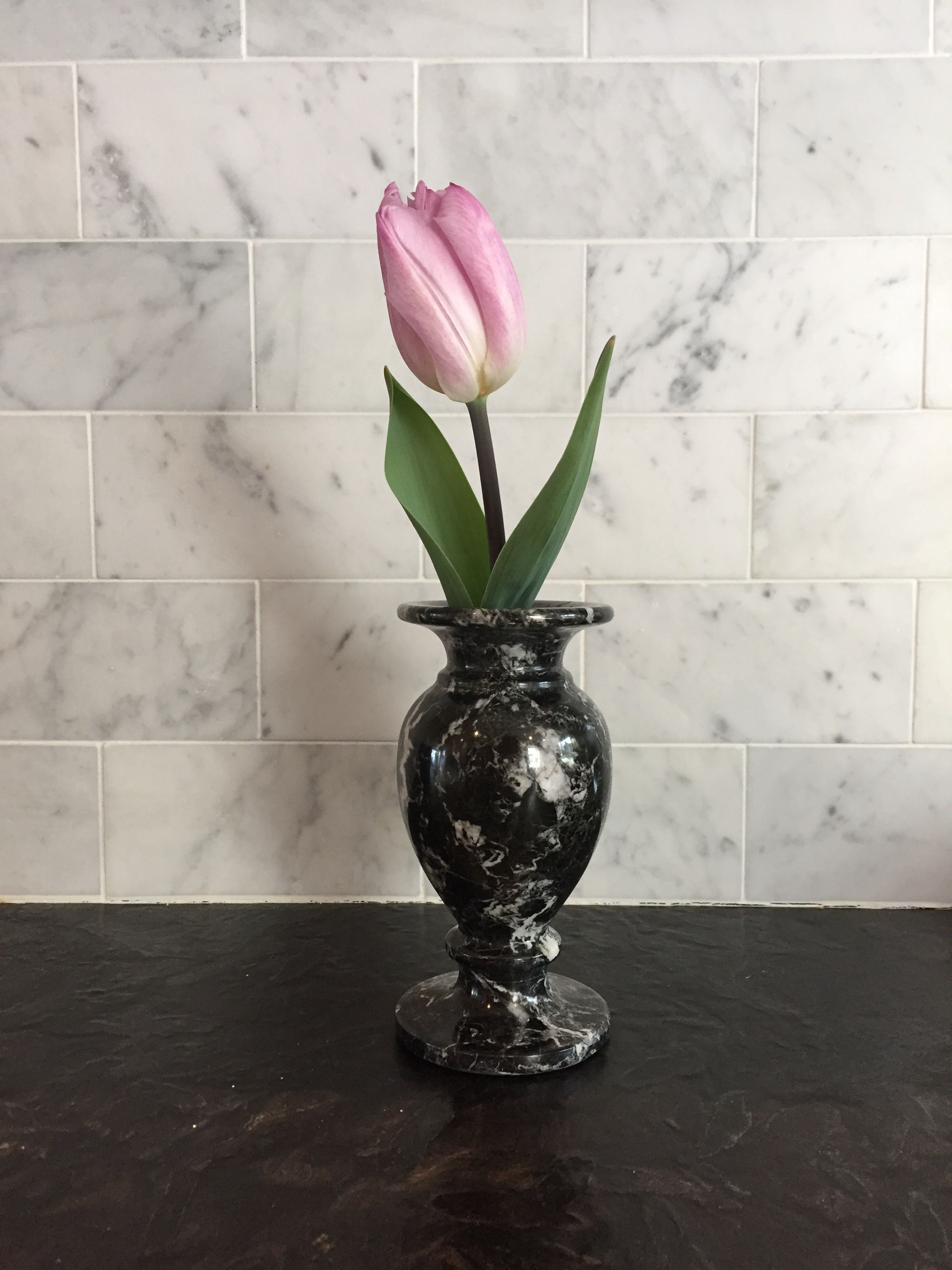 Pink tulip in black and white marble vase. First sign of spring in Seattle.
