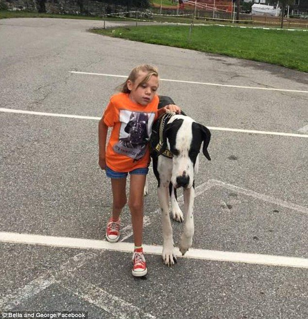 Girl Learns To Walk Again With The Help Of Her Great Dane
