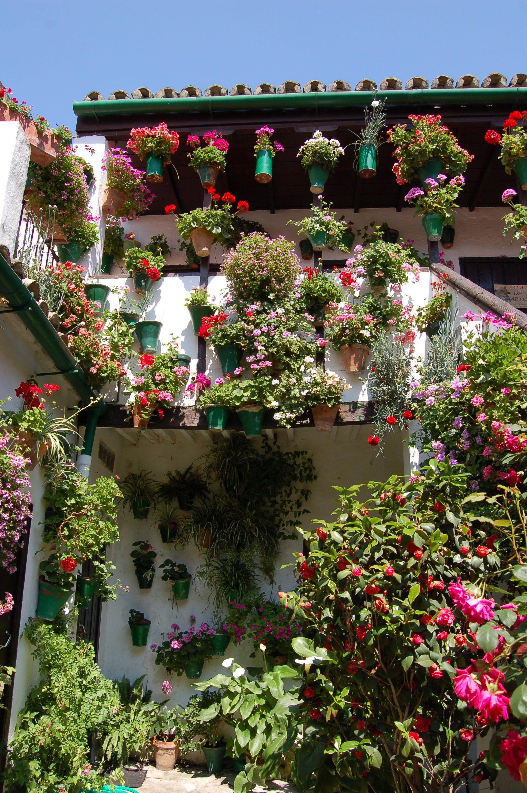 Cordoba, Spain | i love it here | Pinterest | Cordoba spain, Cordoba ...