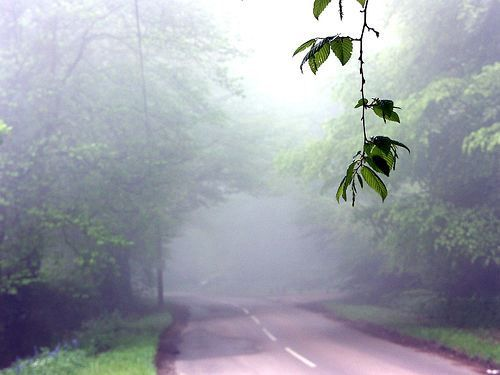 Scary Roads -A229 from Sussex to Kent, England. If you are faint of heart, this road is not recommended. Another contender for England's most haunted road is A229. The local constabulary are not strangers to calls of people plowing into pedestrians, more specifically, a woman in white, only to lose track of the body.