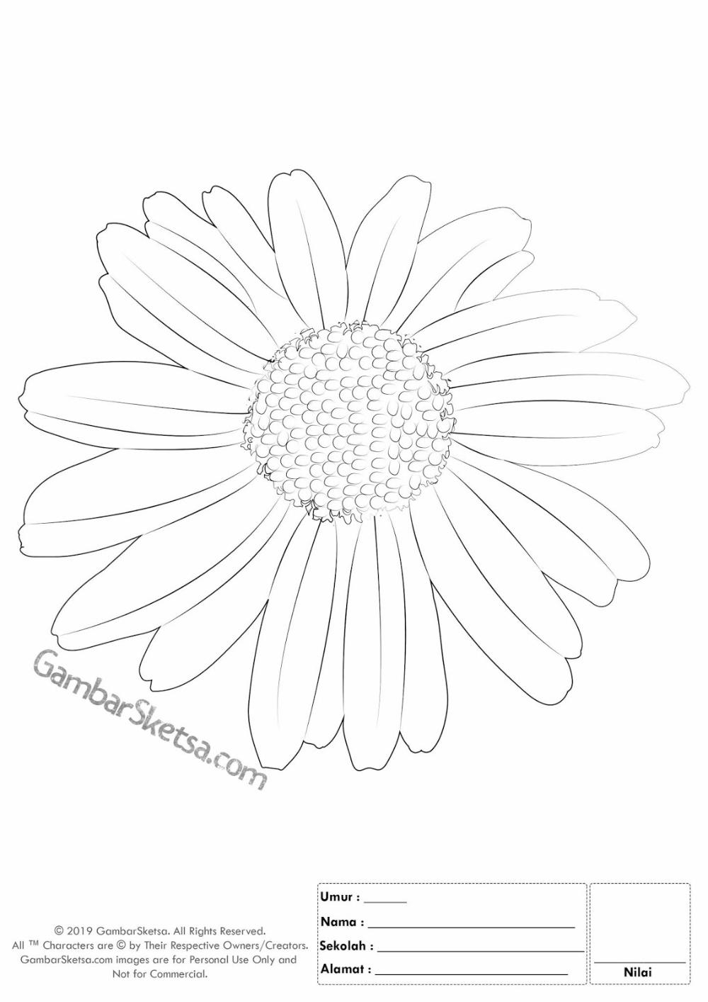 Pin On Gambar Mewarnai Bunga