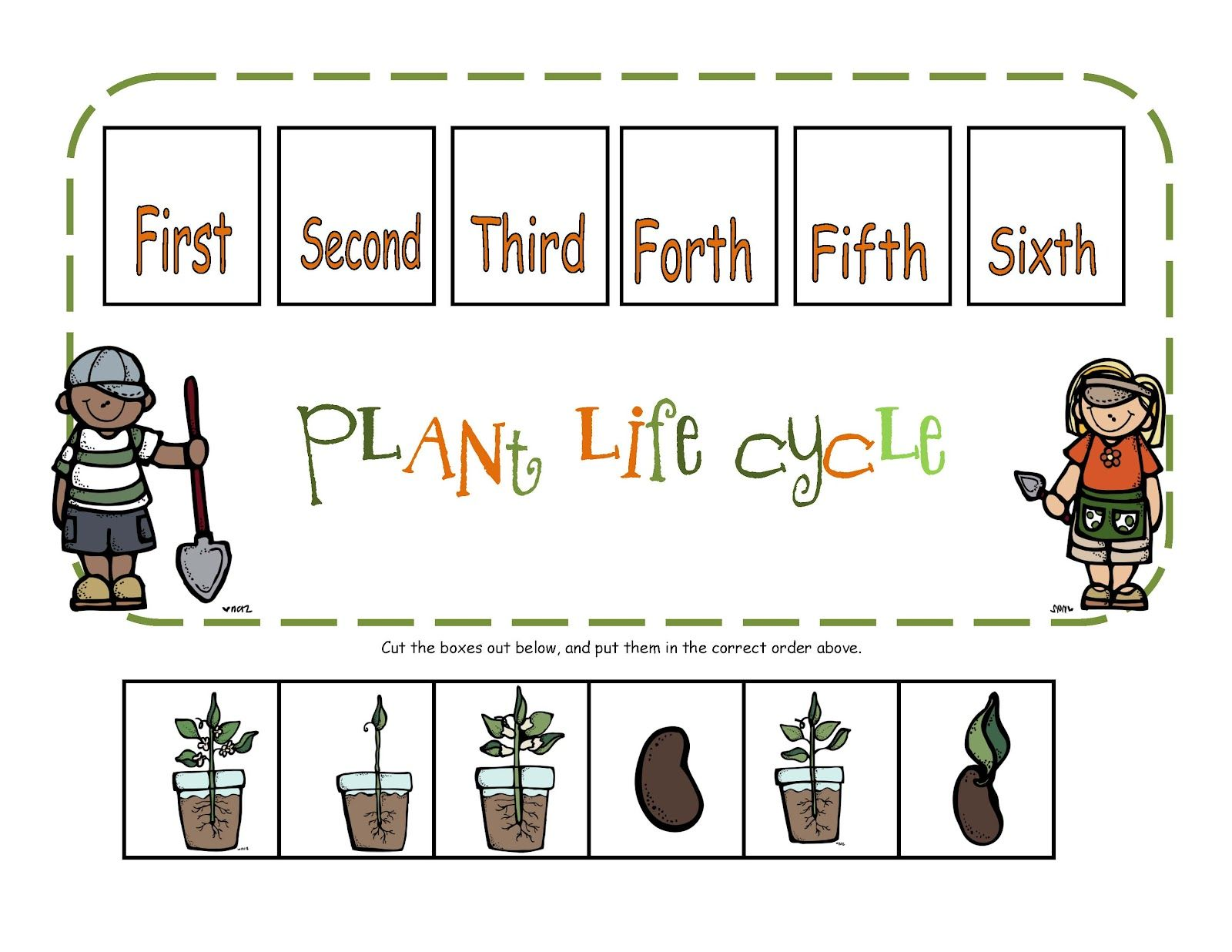 Worksheets Life Cycle Of A Plant Worksheet preschool printables plant life cycle printable science plants printable