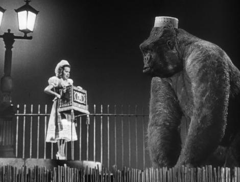 Image result for images of terry moore in mighty joe young 1949