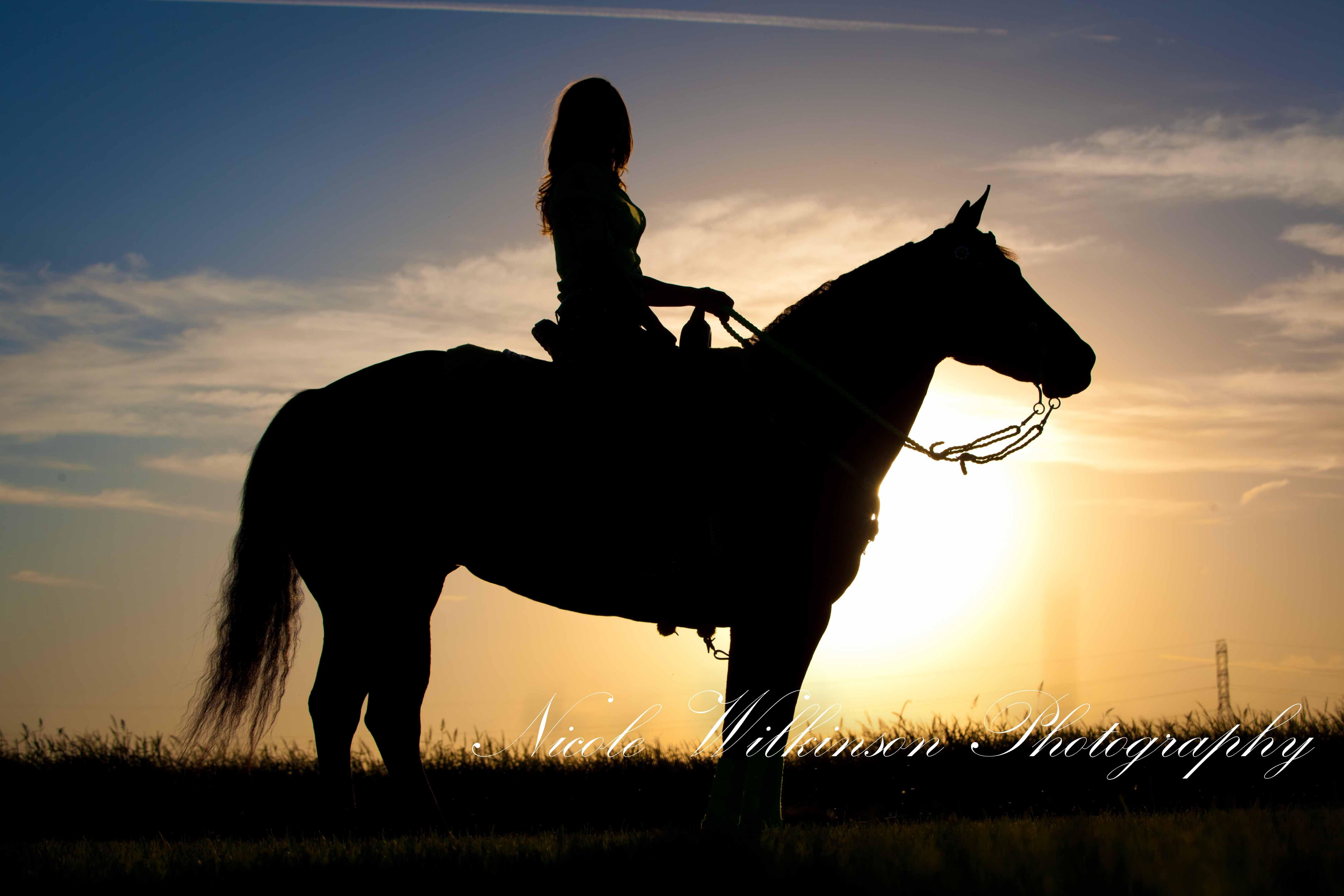 создать картинки с лошадьми предки