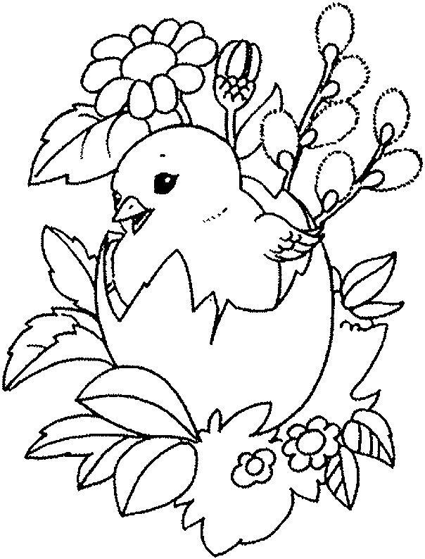 Dibujos para Pintar Colorear. Animales Aves 83 | Dibujos Infantiles ...