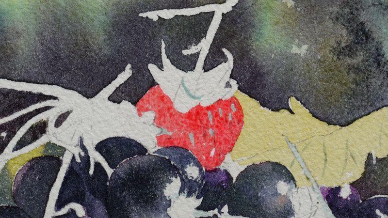 Cassis Groseilles En Rouge Et Noir Videos De Peinture