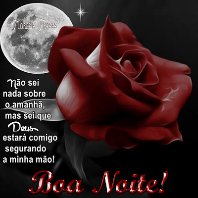 Flores E Frases Boa Noite Behelenasivasouza2 Good Night