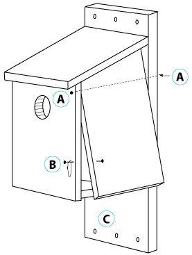 kestrel saw whet owl and screech owl nest box washington