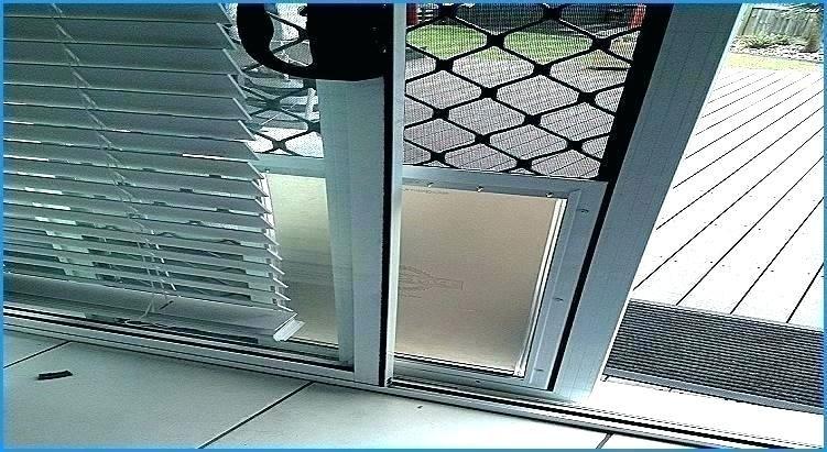 Pin By Kebelek Ngeseng On Door And Window Ideas Pet