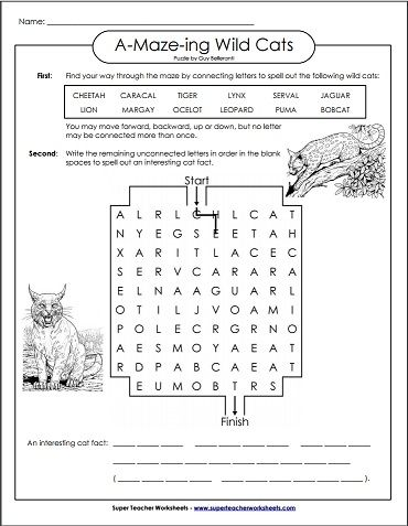 Try this Wild Cats Word Maze and reveal a fun fact with the ...
