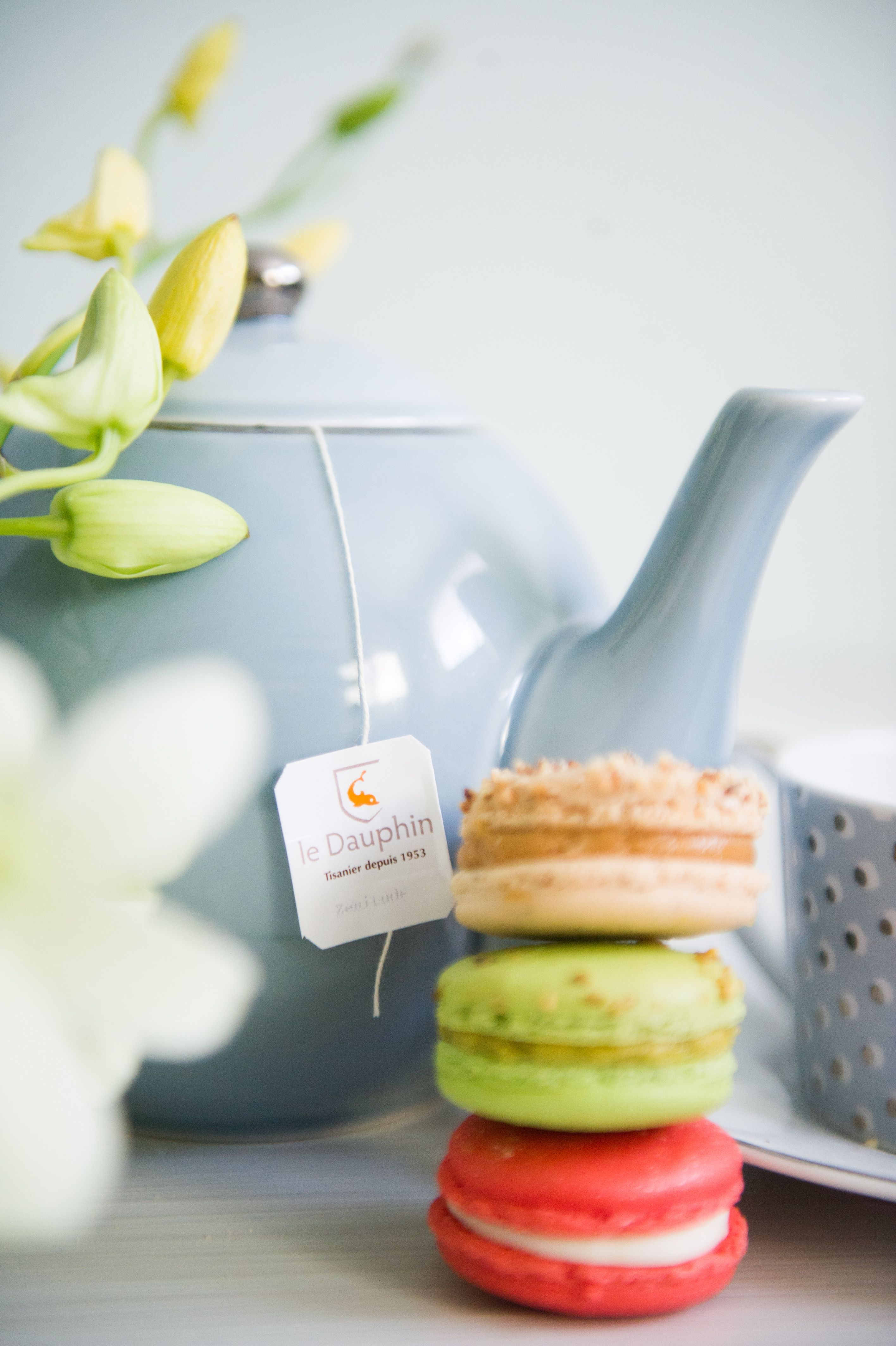 Macarons made in our yellow house in calgary. yannpins