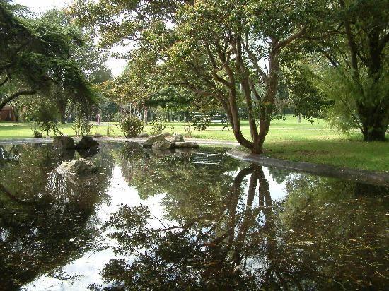 Fotos de Jardin Botanico Jose Celestino Mutis: Dale un ...