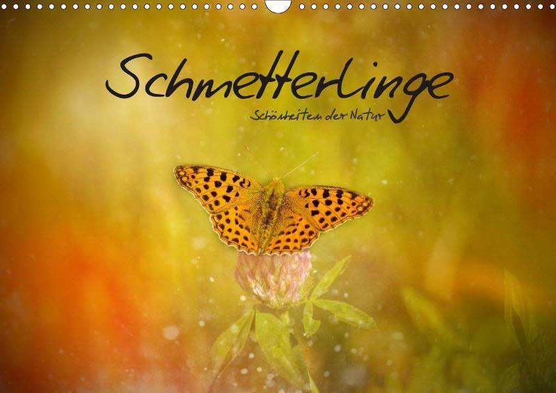 Schmetterlinge - Schönheiten der Natur - CALVENDO