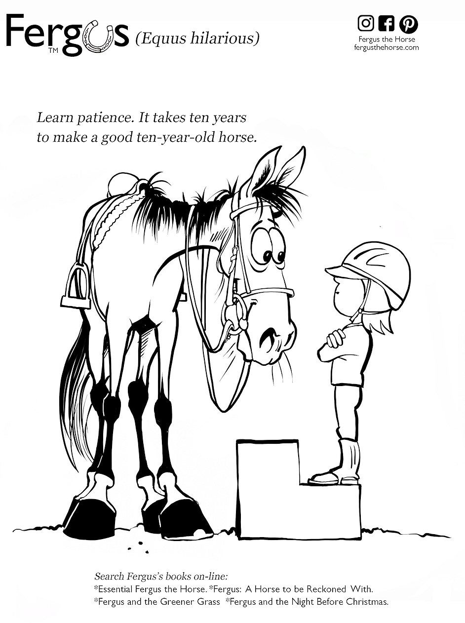 Fergus The Horse Horse Cartoons By Jean Abernethy Horse Cartoon Horse Cartoon Drawing Childrens Books Illustrations [ 1262 x 942 Pixel ]