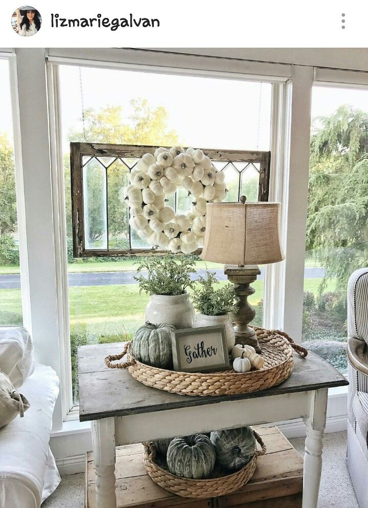 white potted plant for living room side table  farmhouse