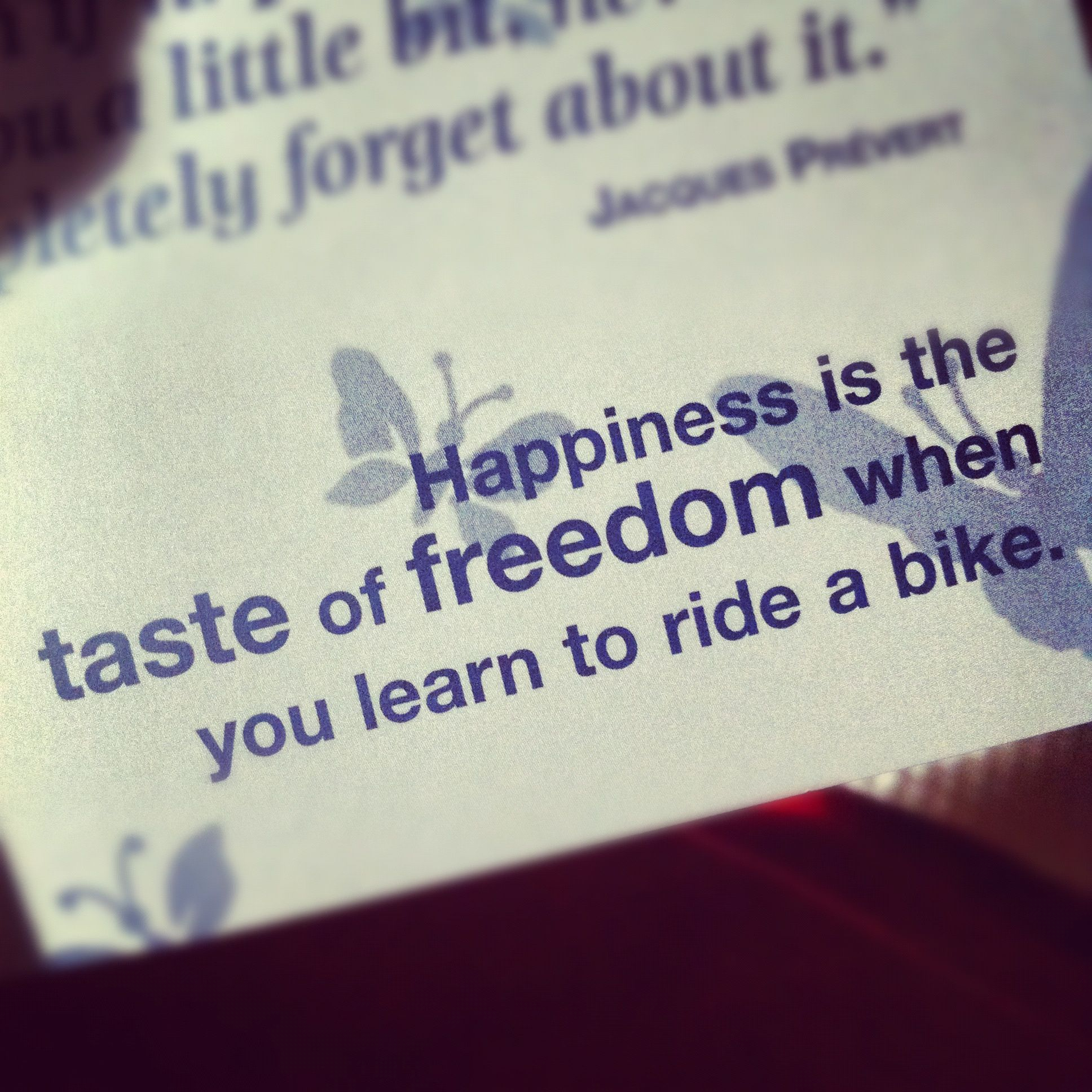 Happiness Is The Taste Of Freedom When You First Learn To Ride A