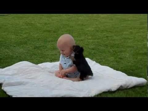 Bambini teneri ~ Un bambino e un cucciolo di cane che teneri da guardare
