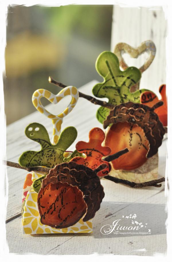 Jiwon's Magnolia Blog: Acorn chocolate packaging