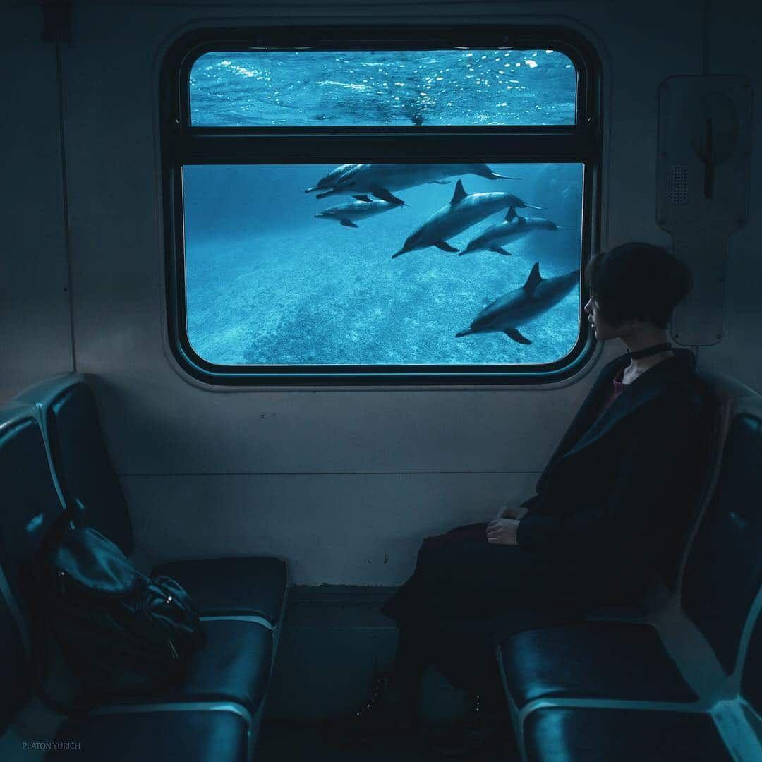 Les photos surréalistes semblent sortir tout droit d'un rêve dont vous ne voudrez pas vous réveiller   – Sanatsal