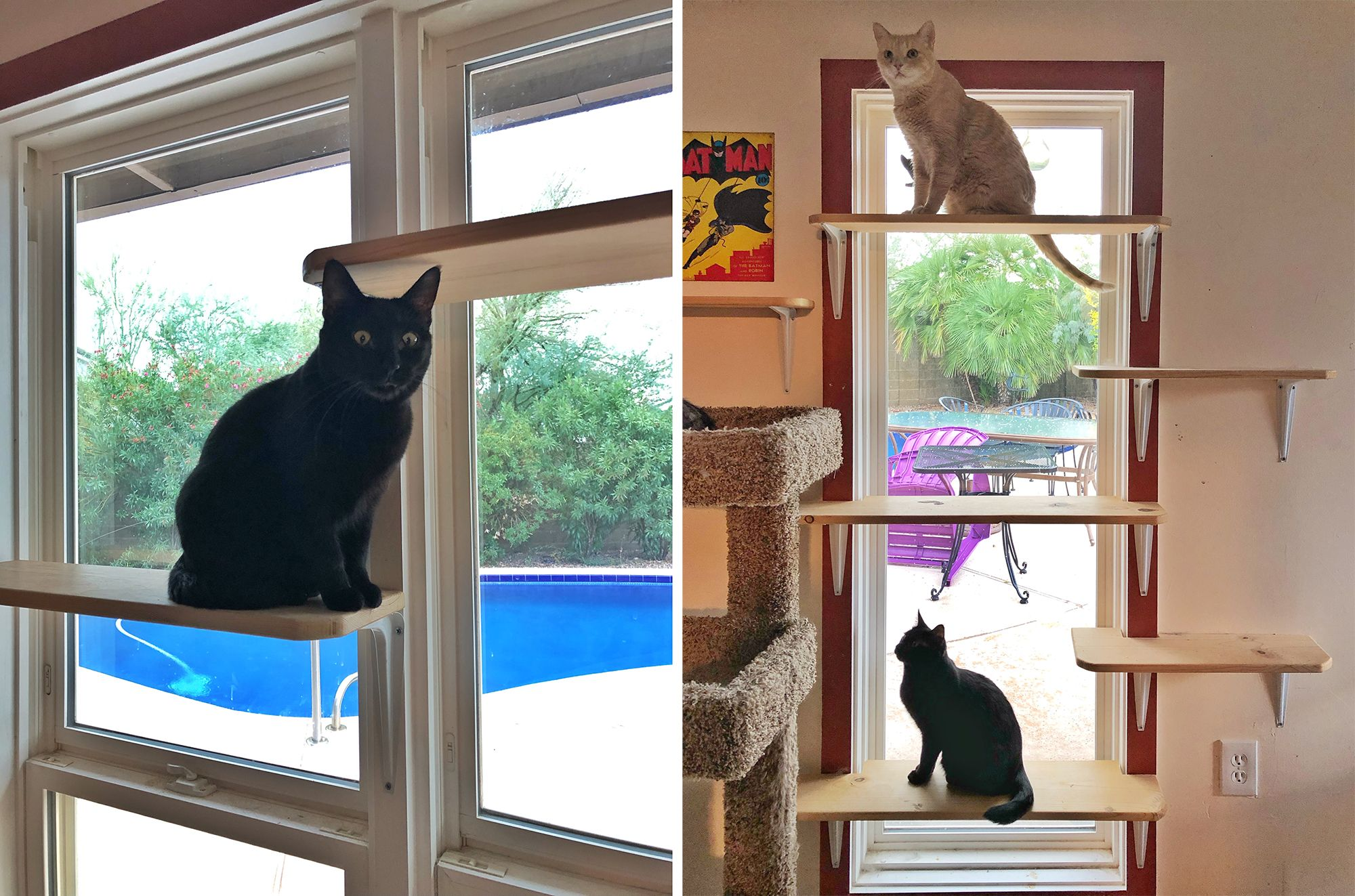 how to build a catio window
