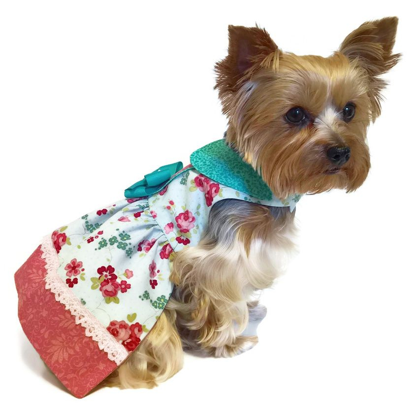Pattern 1557 Bella Rose Dog Dress by Sofi & Friends | Sofi & Friends ...