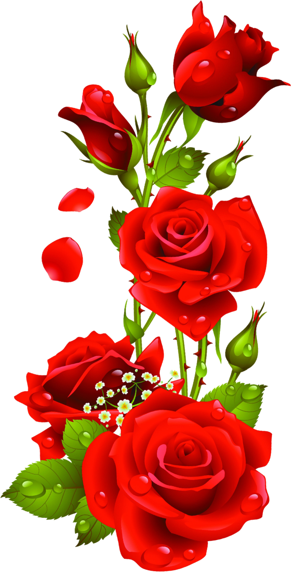 Red Roses Vector Kyrmyzy Gul Png Resimler Png Kyrmyzy Gul Clip Art Library Beautiful Rose Flowers Flower Phone Wallpaper Rose Flower Wallpaper