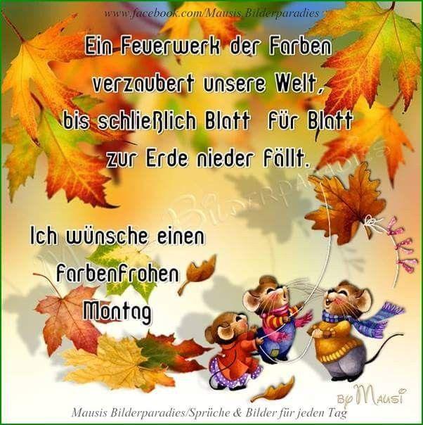 Guten Montag Montag Grüße Guten Morgen Montag Bilder Und