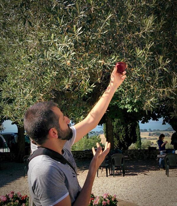 #AlTrasimeno ho visto @lddio cogliere una mela da un ulivo. La gente grida al miracolo, prostrandosi al divino.  foto di @davidelico