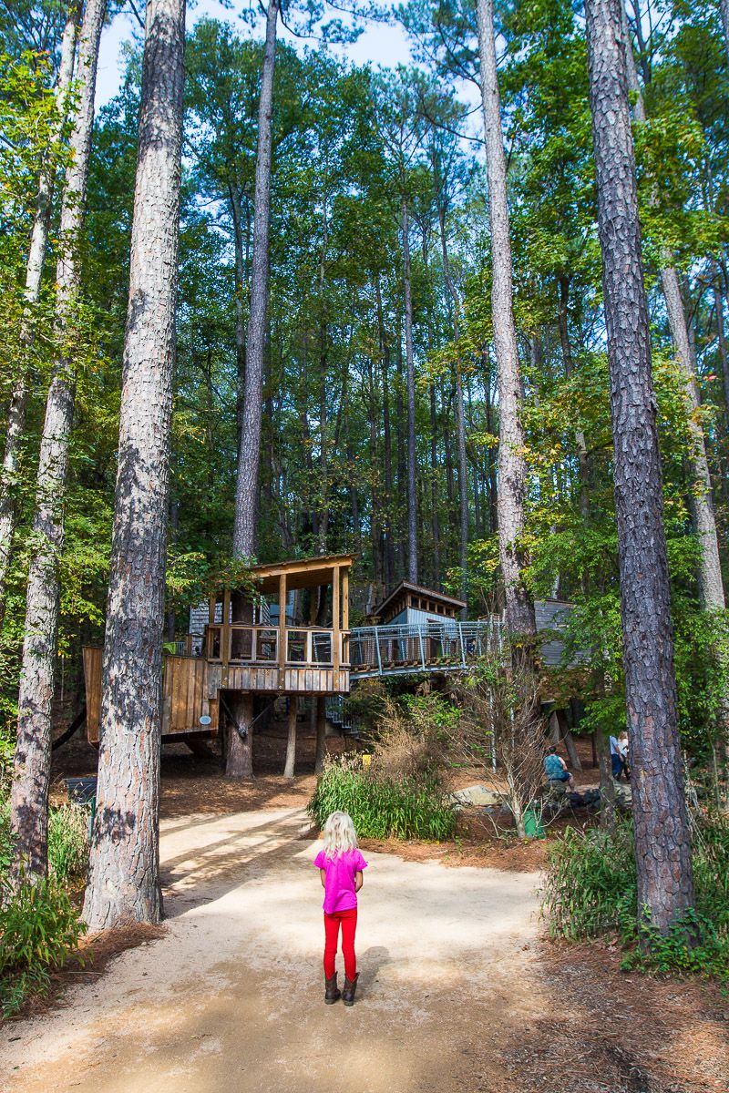 48 Hour Itinerary - Best Things to Do in Durham, NC with Kids (or ...