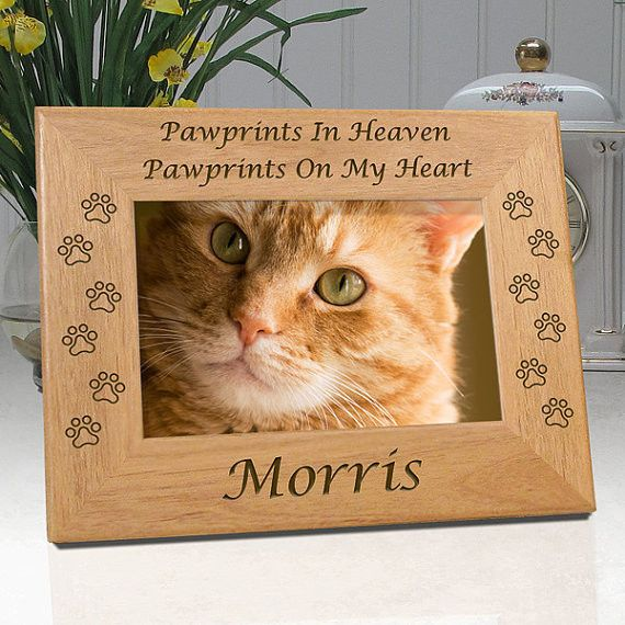 personalized memorial cat frame pawprints in heaven pawprints on my heart