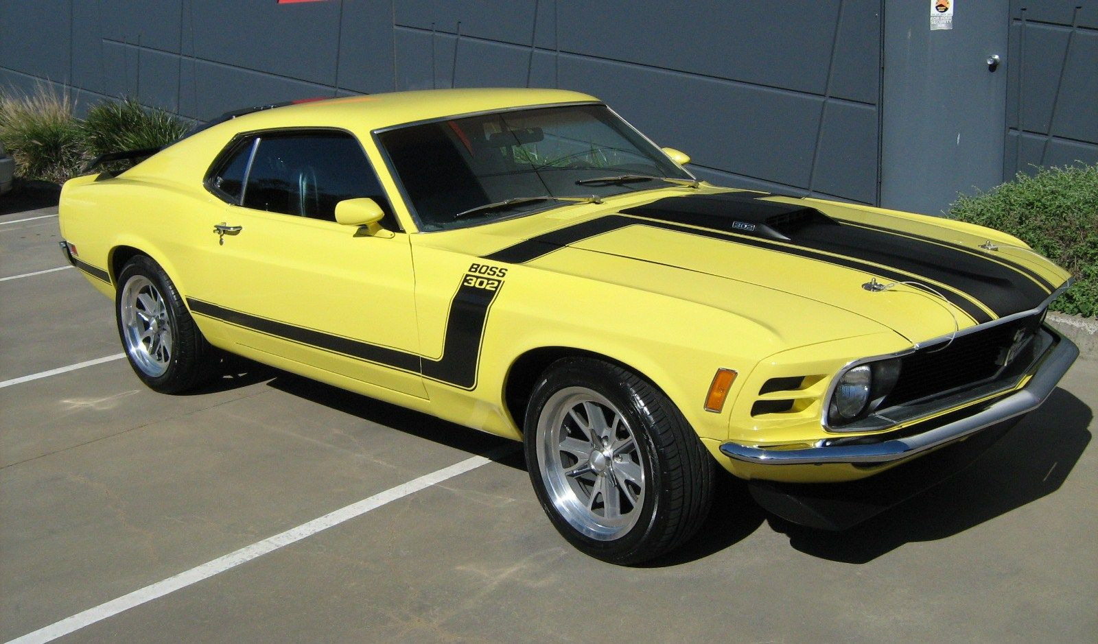 1960s Ford Muscle Cars   Cars   Pinterest   Mustang boss, Mustang ...