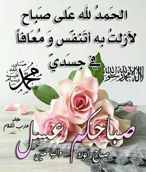 صباحكم معطر بذكر الله Islam Flowers Rose