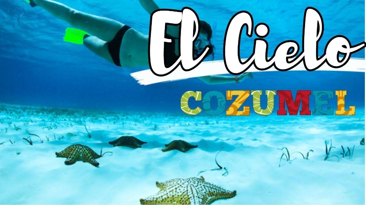 Tour El Cielo Cozumel Cuanto Cuesta Que Incluye Desde Cancun O Playa Carmen Youtube El Cielo Cozumel Cozumel Playa Del Carmen