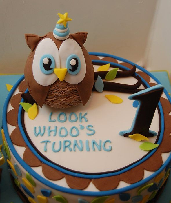 Look Whoos Turning ONE Owl cake Smash cake for a boy Custom