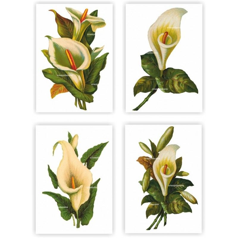 Papel decoupage manualidades digital calas. www.creaydecora.com800 × 800Buscar por imagen Papel decoupage digital calas (formato A4) - Con flores recortables de fondo transparente. ............................ Albert Edelfelt (Finnish: 1854 –1905) - Buscar con Google