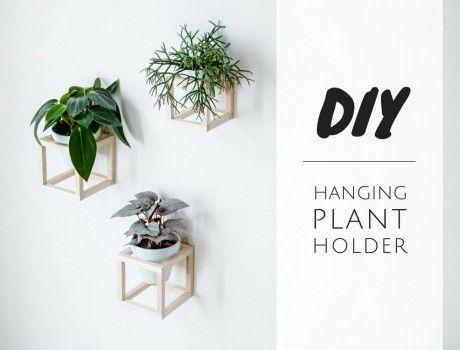 Dekorative Pflanzen Fürs Wohnzimmer. weinkistenregal weinkiste ...
