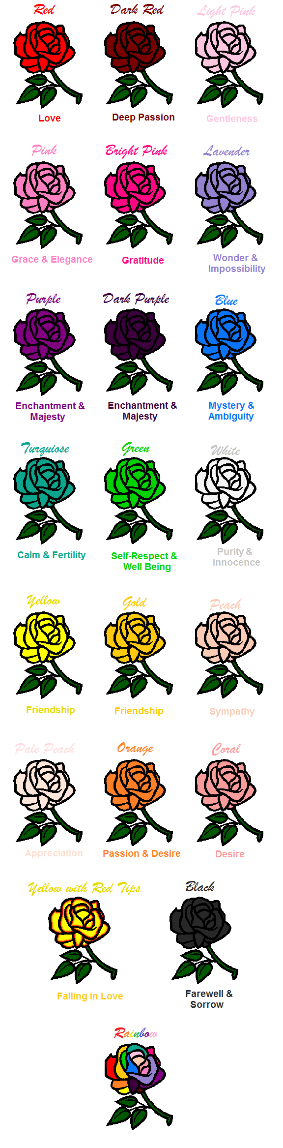 Rose Color Meanings By Arianatheechidnaiantart On