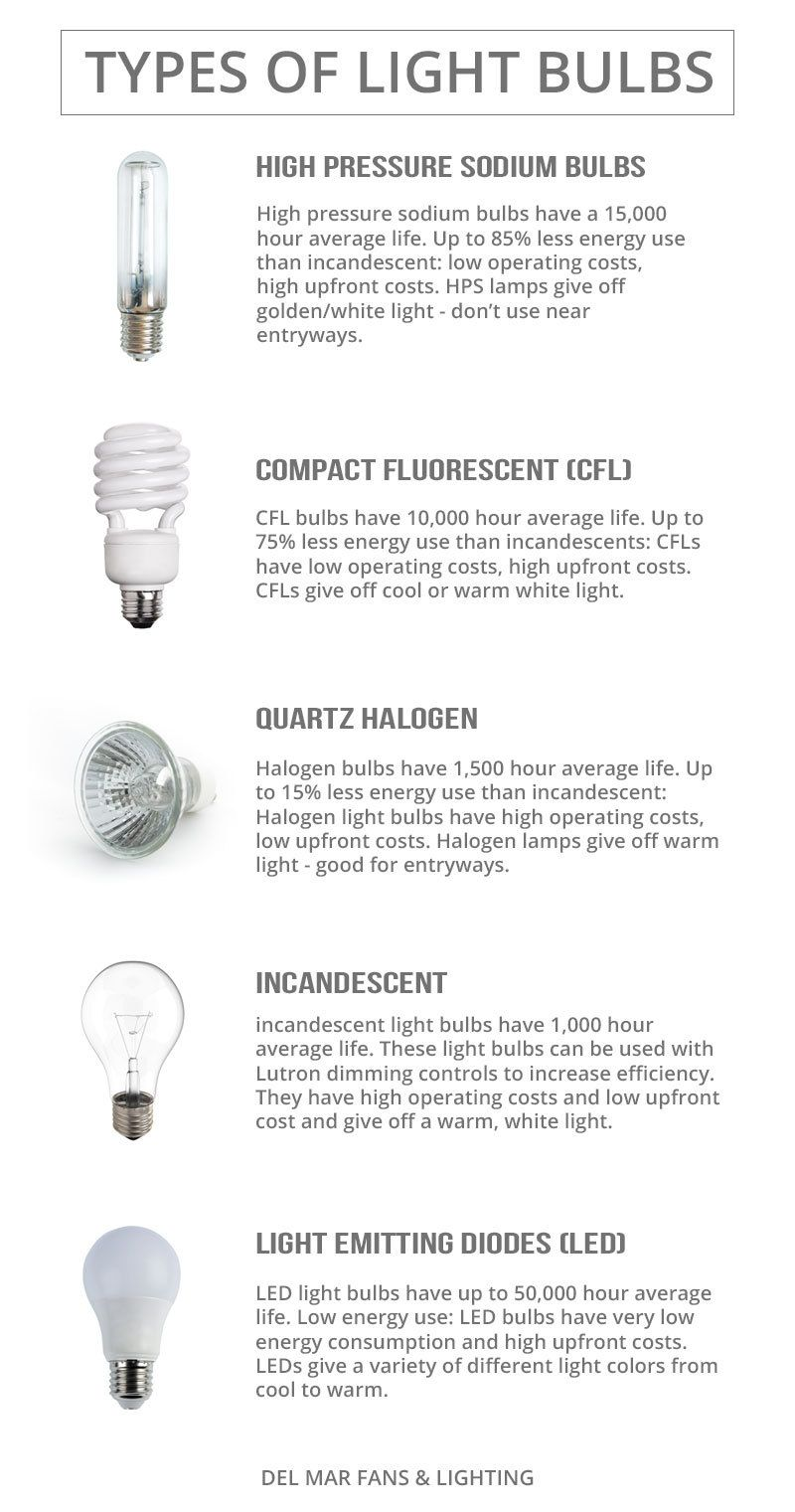 Which Kind Of Light Bulbs To Use Bulb Light Bulbs Types Of