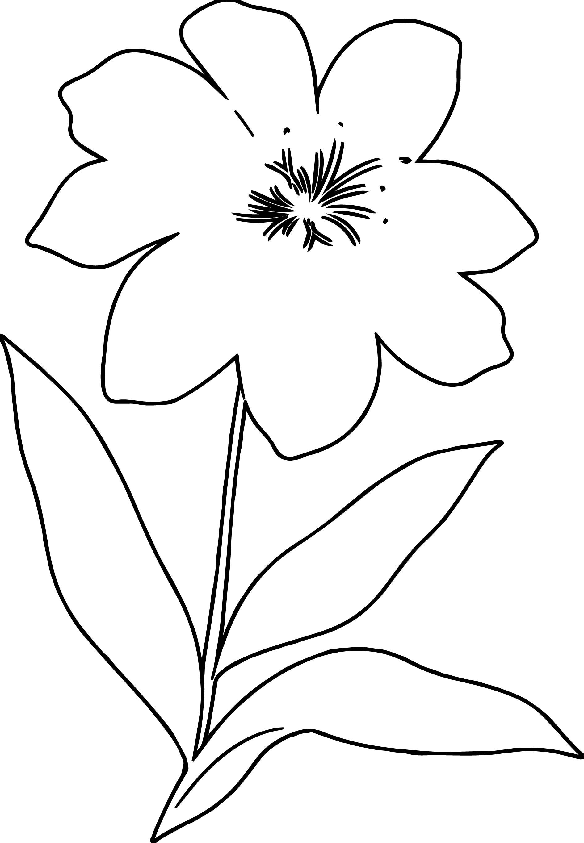 Awesome One Flower Coloring Page Flower Coloring Pages Tree Coloring Page Bee Coloring Pages [ 2731 x 1891 Pixel ]