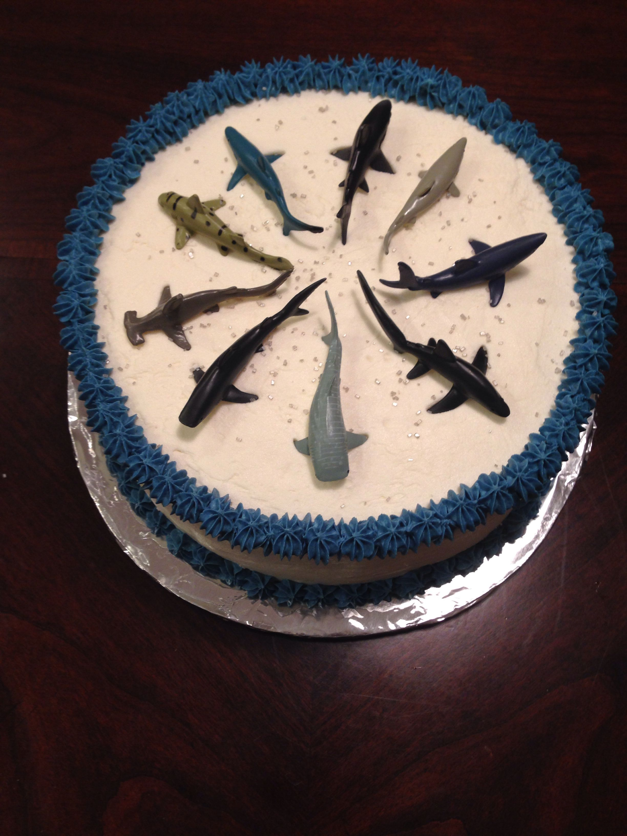 Shark Cake By Me Jake Birthday Pinterest Shark Cake And